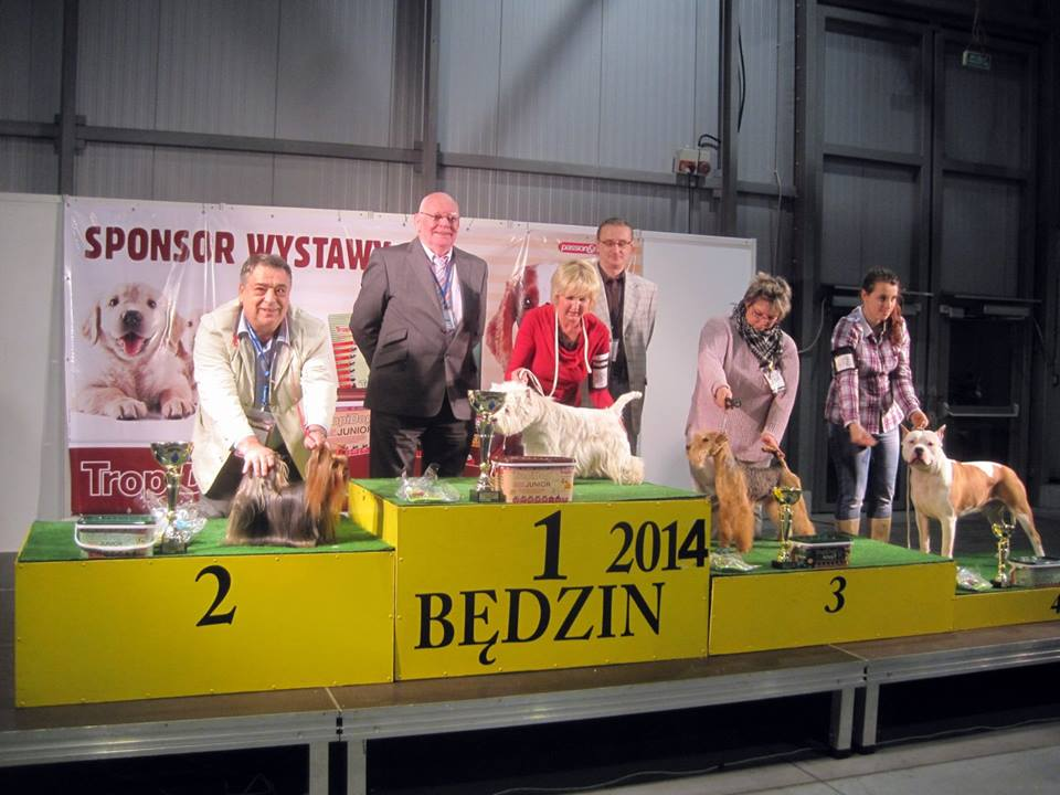Będzin - 19.01.2014 National Dog Show
