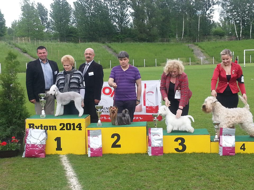 BYTOM, Poland 18.05.14 National Dog Show