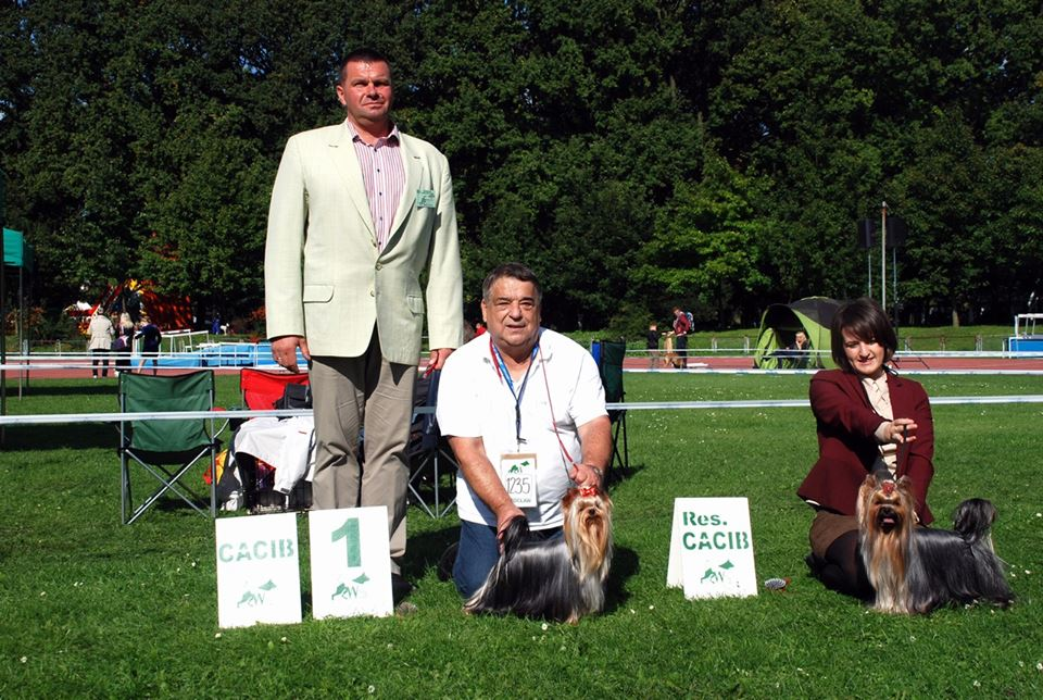 XXII International Dog Show - Wrocław 27-28.09.2014