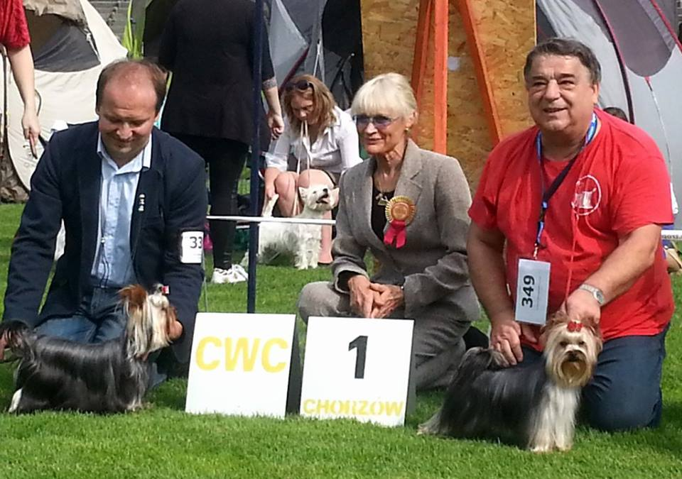 Chorzow 09.13.2014 - 54 National Dog Show.