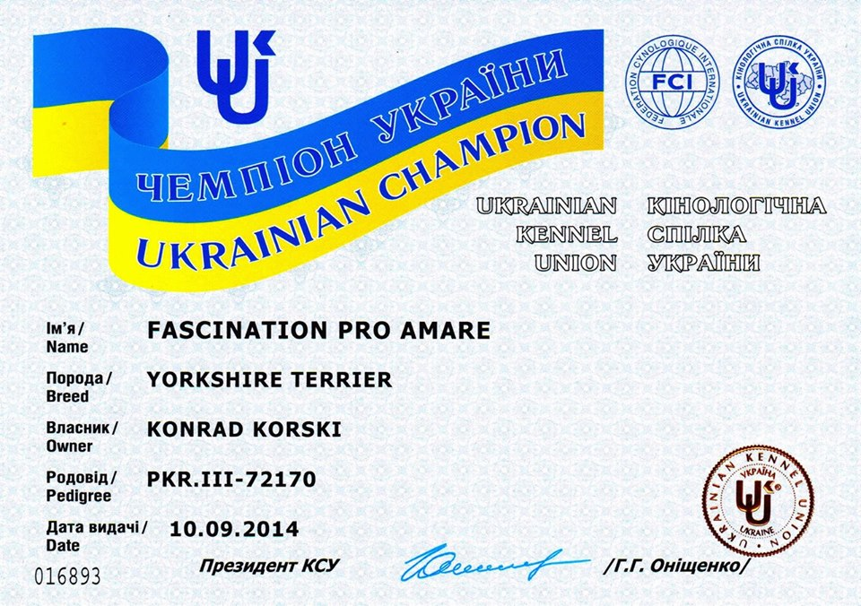 Nowe Championaty dla Pro Amare
