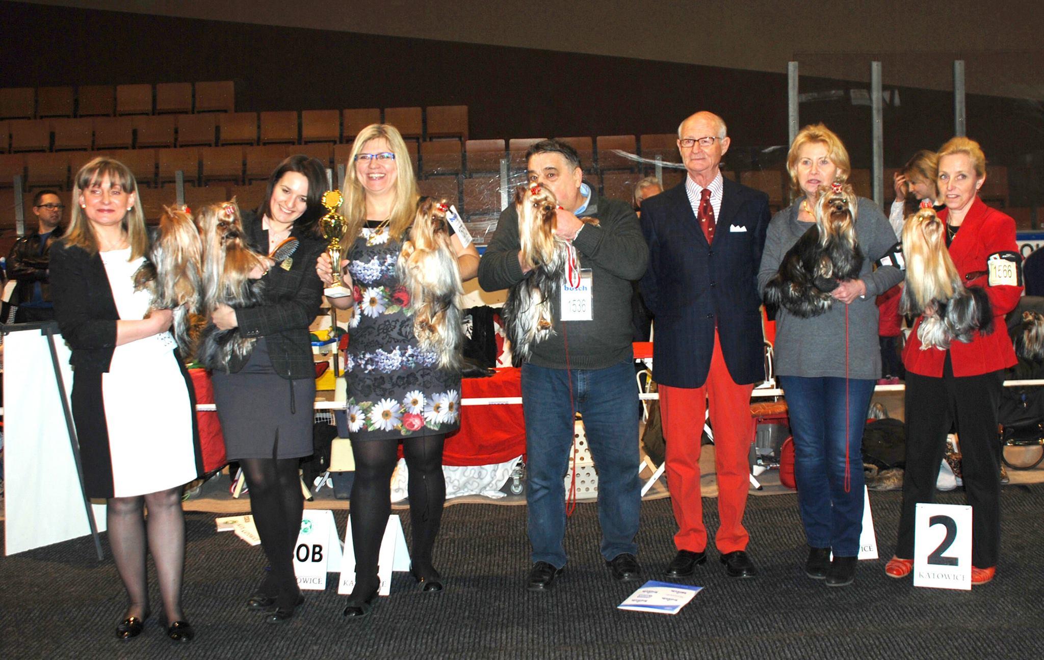 IDS Katowice - 22.03.2015