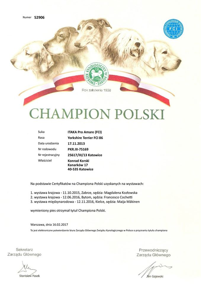 ITAKA Pro Amare - new Polish Champion